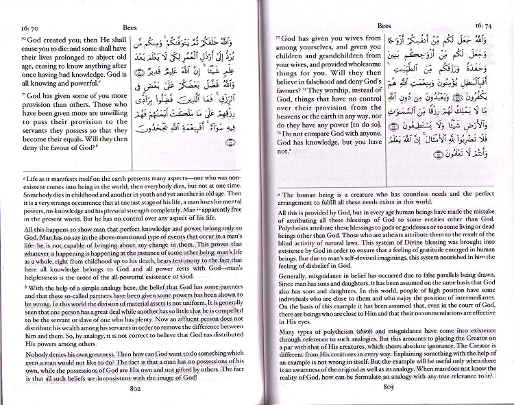 The Holy Quran: Arabic Text, Translation & Commentary